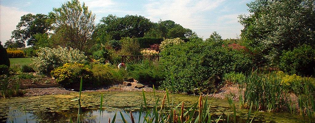 Longframlington Gardens Home Page