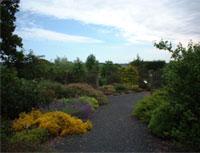 Longframlington Gardens and Arboretum